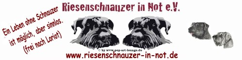 Riesenschnauzer in Not